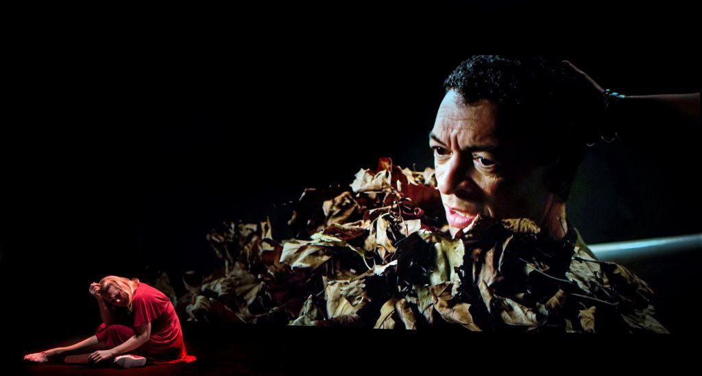 Blank Out Michel van der Aa met Roderick Williams (c) Marco Borggreve