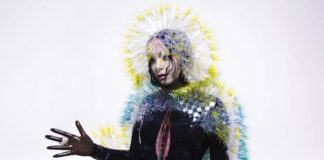 Björk - Vulnicura album cover