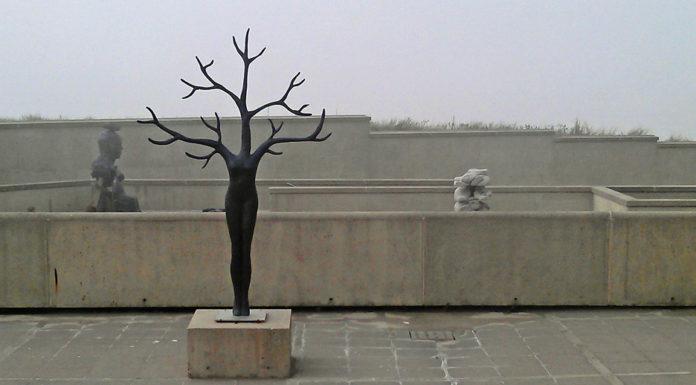 'Daphne' op de patio van museum Beelden aan Zee (foto auteur)
