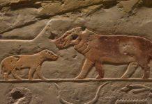 Nijlpaarden op een tempelmuur